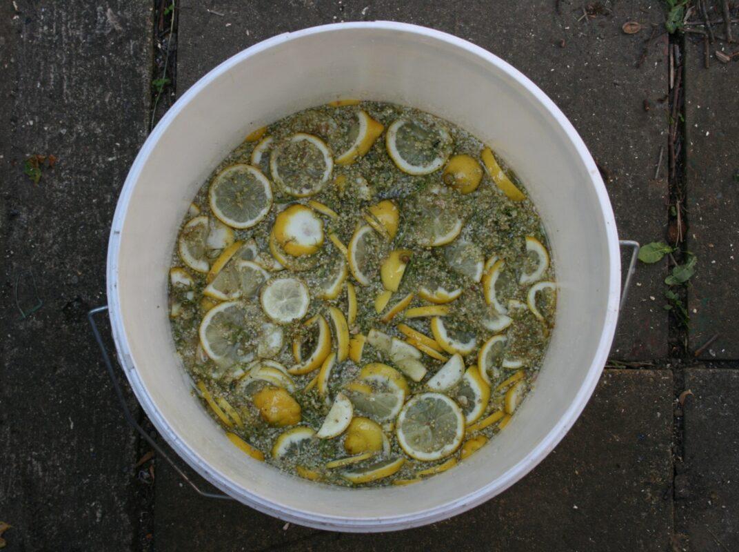 Making elderflower cordial in a bucket