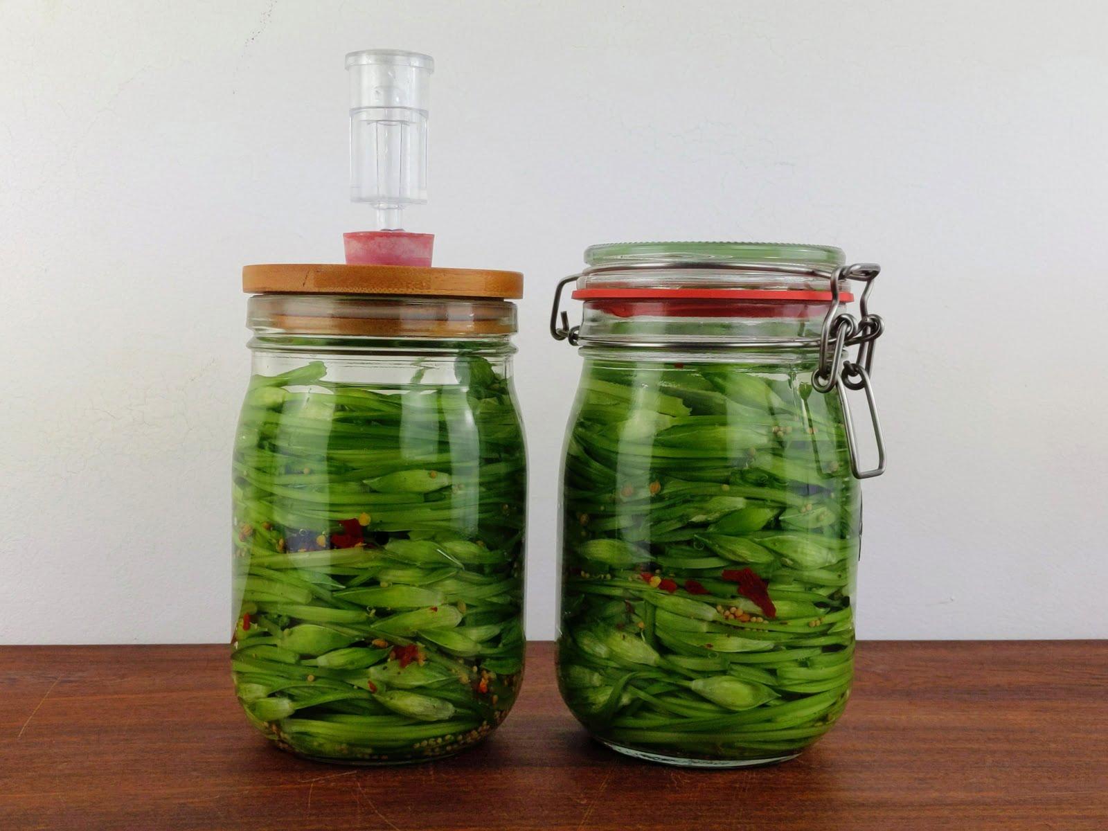 fermented wild garlic buds recipe in fermentation jars
